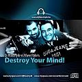 Dj Hlásznyik vs. Wave Riders - Destroy Your Mind maxi lemez borító!